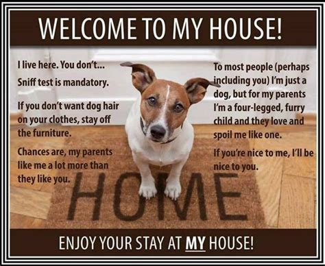 dog house rules dogs rules funny dog rules family pet four legged family love sniff my house cute