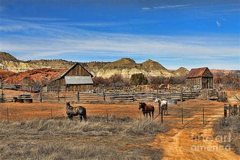 Horse Duvet Cover Horse Ranch In Utah Photograph By Jack Schultz