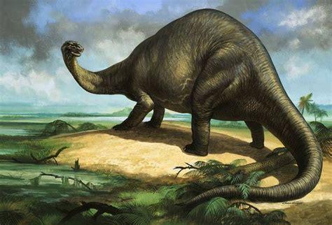 Fosil Gajah Daging 20 gambar dinosaurus terbesar di dunia yang penah ada