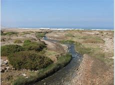 Chile Sorprendente : Desembocadura Rio Loa. Iquique Lenguado