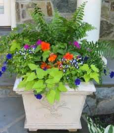 Plant Combination Ideas For Container Gardens 347 Best Images About Outdoor Flower Container Ideas On Window Boxes Bird Baths And