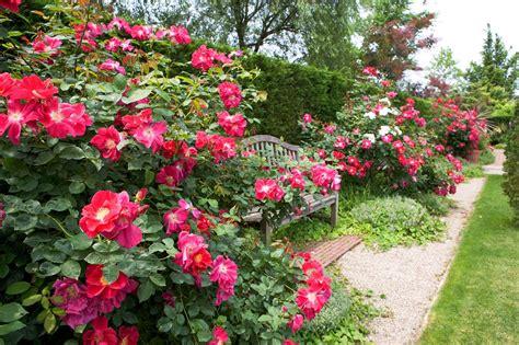 english garden english garden matsue connect shimane