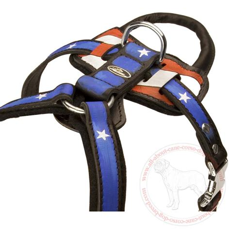 best harness for dogs best harness best free engine image for user manual