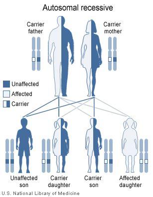 pattern dystrophy wiki autosomal recessive causes symptoms treatment autosomal