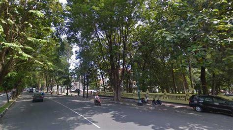 Pohon Pohon Rindu warganet rindu rindangnya pepohonan jalan bantul