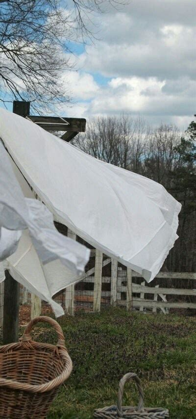 the smell of fresh the pleasures of our most elusive sense books 17 best images about laundry on clothes line