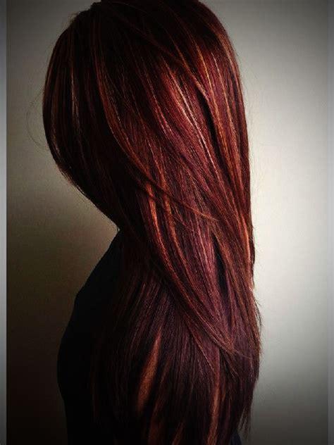 dark brown dark brown hair with carmel highlights brown hairs