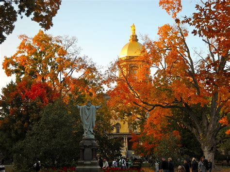 in fall fall the general ledger blog network university