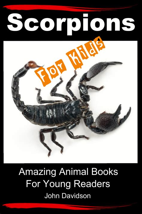 amazing picture books amazing animal books scorpions