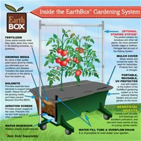 earthbox container gardening system in the garden on gardening tomato plants and