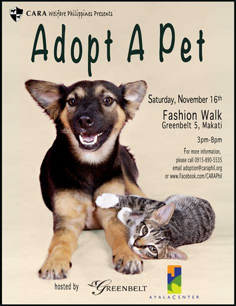 adoptapet dogs cara welfare philippines 187 archive 187 adopt a pet at cara s fashion walk on