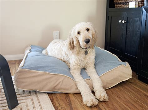 how to make a dog pillow bed do you love your fur baby as much as i love mine then