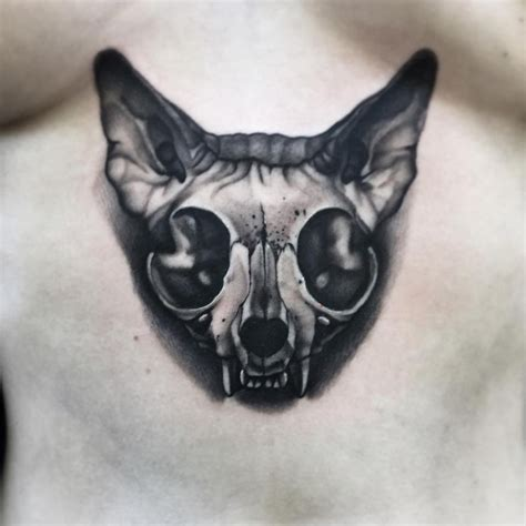 cat skull best ideas designs
