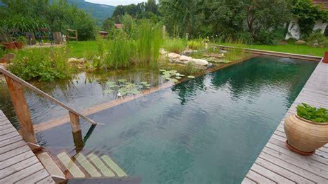 natural backyard pools biotop natural pools garden ponds nature pools