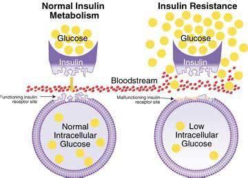 alimentazione per insulino resistenza insulino resistenza dott ssa de mariani