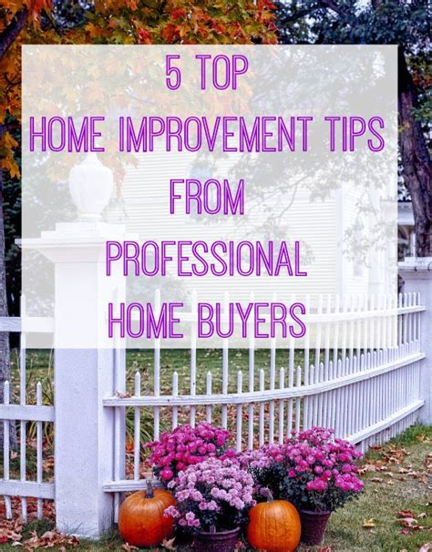 Canvassing Tips Home Improvement 5 Home Improving Tips From Professional House Buyers