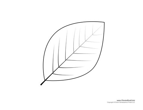 leaf paper template leaf templates leaf coloring pages for leaf