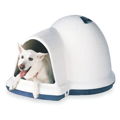 dog house igloo indigo dog igloo style dog house by doskocil pets and cute animals pinterest