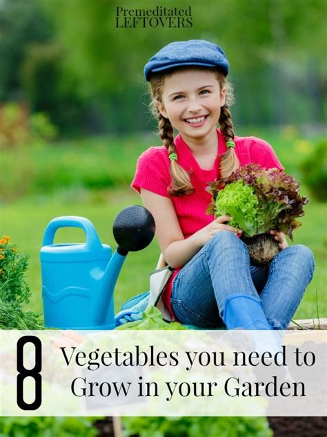 8 vegetables you only need 8 vegetables you need to grow in your garden