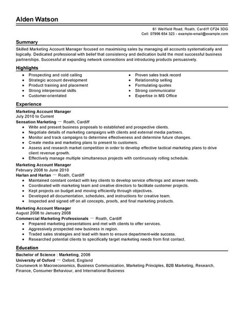 Business Account Manager Sle Resume by Account Manager Resume Sales