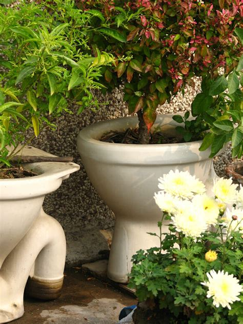 clever plant container ideas
