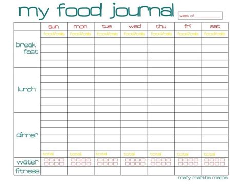 weight loss chart and journal