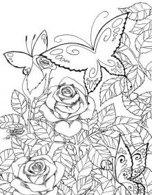 Backyard Page Garden Coloring Pages For Adults Imagens Coloring