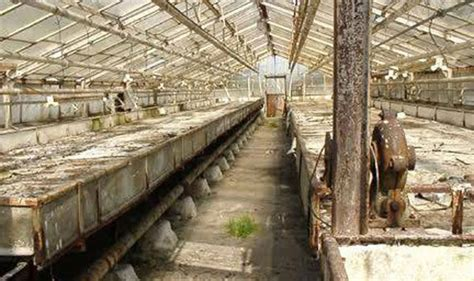 auschwitz and after untouched auschwitz greenhouses where jewish prisoners grew flowers for the history