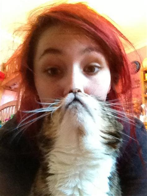 Cat Beard Meme - cat beard memes 23 dump a day