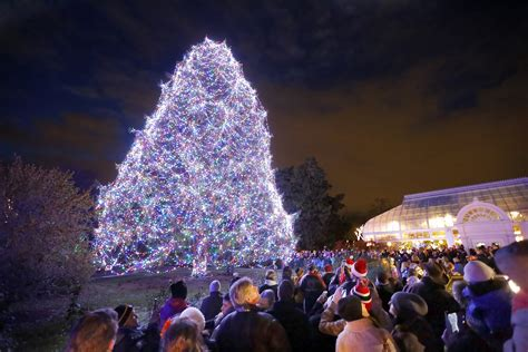 Let The Lights Shine With Lights Before Christmas At Lights Before Toledo Zoo