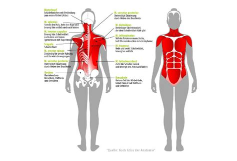 schmerzen in beinen beim liegen r 252 ckenschmerzen joggen