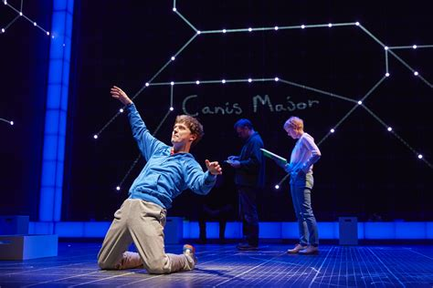 the curious incident of the in the nighttime summary the curious incident of the in the time announcement