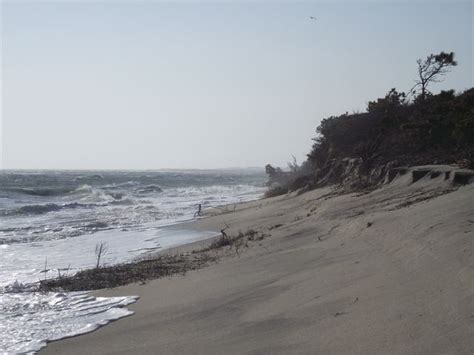 Chappaquiddick Erosion Quot Quot Scapes Vineyard Conservation Society