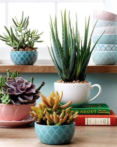 unique  creative succulent planter ideas