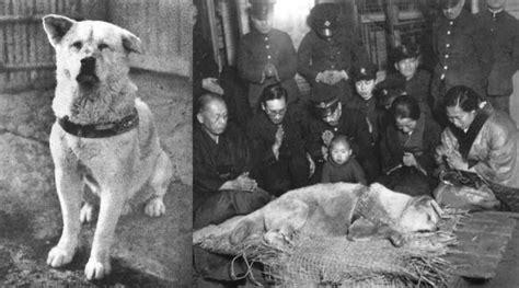 90 Years Later the Legendary Dog Hachiko Finally Reunited ... Hachiko Movie