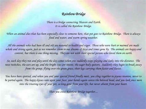 2219 best rainbow bridge images on quote rainbow poems and quotes quotesgram