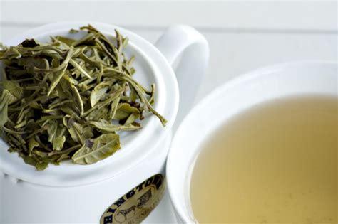 Teh White Tea white tea facts healthy tips healthy tips