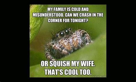 Misunderstood Spider Meme - misunderstood spider meme x hilarious pinterest