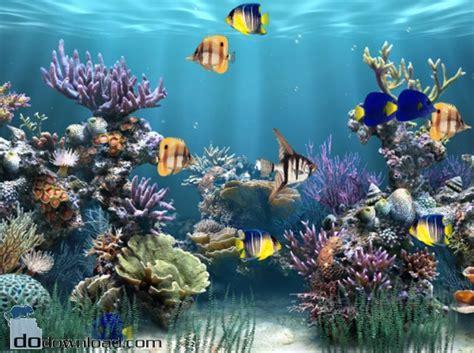themes for windows 7 aquarium aquarium animated wallpaper image aaquarium animated