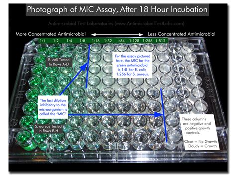 mic test minimum inhibitory concentration test mic microchem