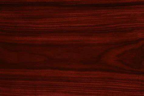 legni pregiati per mobili legno pregiato legno
