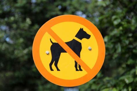 divieto d ingresso ai cani animali vietato l ingresso in tribunale a tutto