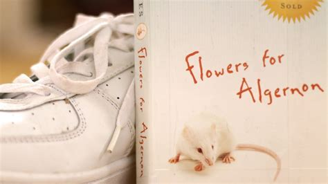 flowers for algernon book report flowers for algernon by daniel keyes book summary and