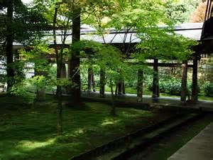 kyoto japan moss garden 171 emily wheeler