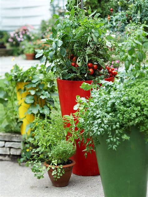 fall container gardening vegetables 17 best images about patio pots and containers on