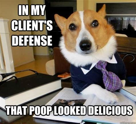 best of the lawyer dog meme 20 pics pleated jeans