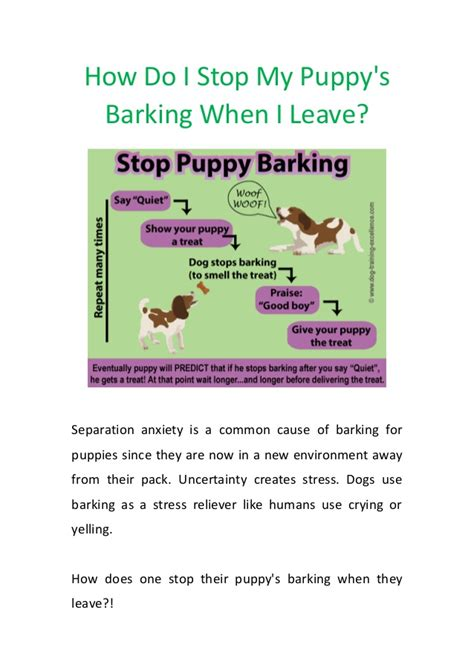 dog barks when i leave how do i stop my puppys barking when i leave