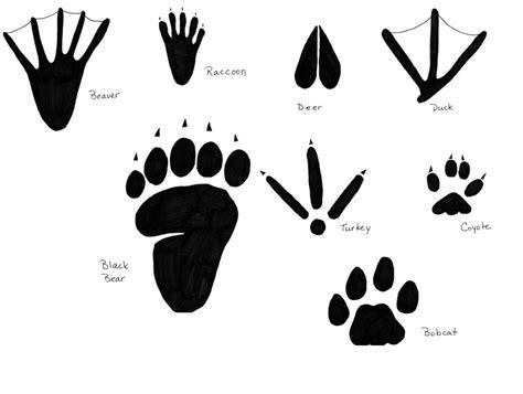 printable animal footprints best photos of animal footprint templates printable