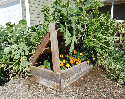 Raised Bed Gardening Ideas Squash Growing Rack Made Out Of A Pallet