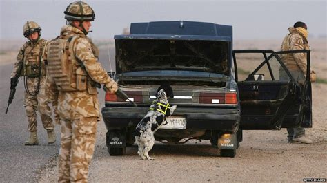 Rip Sgt Stubby Never Forget Remembering Our Canine Heroes Lovejoys